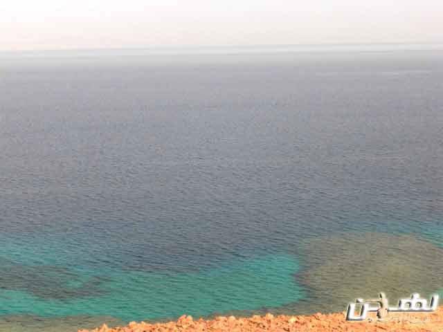 البحر الأحمر والشعاب المرجانية